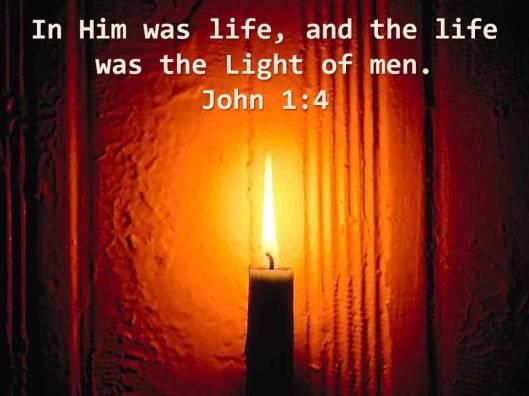 Light of Life Image
