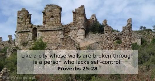 proverbs-25-28