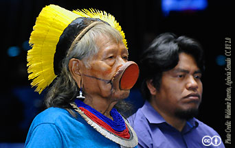 "The Pan-Amazon Synod: Towards a New ""Church With an Amazonian Face"""